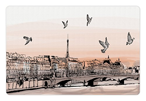 Panorama Landscape (Ambesonne Landscape Pet Mat for Food and Water, Panorama Sketch Art Sunset View of Paris From Pont Des Arts with Pigeons River, Rectangle Non-Slip Rubber Mat for Dogs and Cats, Peach Grey)