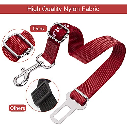 Buy seat belt dog collar leash