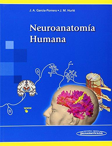 Descargar Libro Neuroanatomía Humana Desconocido