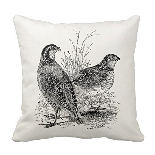 Julyou Vintage Quail Birds - Personalized Retro Game Bird Pillow Cover by Julyou (Image #5)