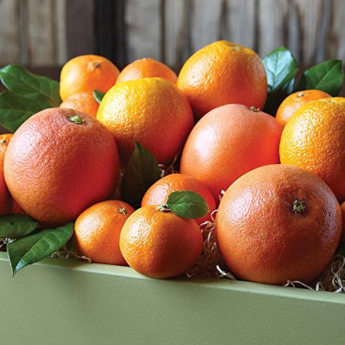 Citrus Medley Gift Box - The Fruit Company