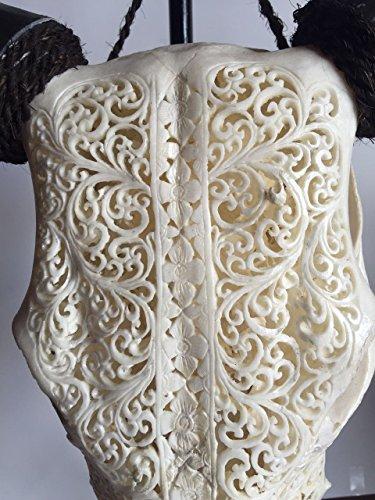- White Carved Cow Skull With Horns, Hand Carved Animal Skull, Lane Flower Design