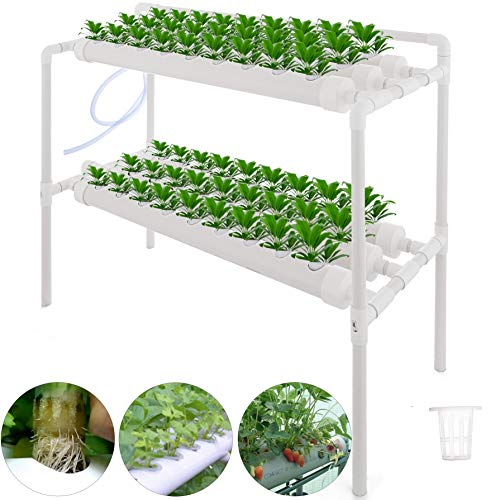 Buy hydroponic system for beginners