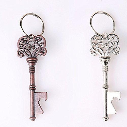 Bluefun® Beer Bottle Opener Keychain Skeleton Key , 2 of pack (Antique Copper&Silver) (Keychain Key)