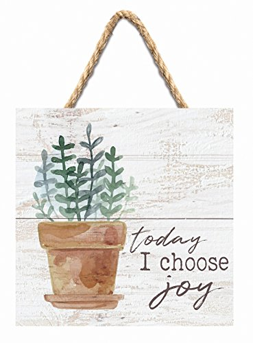 (P. Graham Dunn Today I Choose Joy Plant Whitewash 7 x 7 Inch Wood Pallet Wall Hanging)