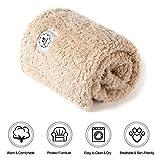 "luciphia Premium Fluffy Fleece Dog Blanket Lightweight Pet Throw for Cat Puppy Pets Beige, Small(24""x32"")"