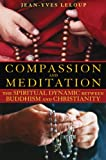 Compassion and Meditation, Jean-Yves Leloup, 1594772770