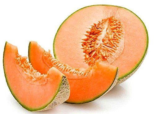 30+ ORGANICALLY Grown Hale's Best Jumbo Musk Melon Seeds, Heirloom Non-GMO, Extra Sweet and Fragrant Cantaloupe, from USA (Hales Best Cantaloupe Seed)