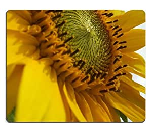 Shot Sunflower yellow flower petals seeds nectar bright Mouse Pads Customized Made to Order Support Ready 9 7/8 Inch (250mm) X 7 7/8 Inch (200mm) X 1/16 Inch (2mm) High Quality Eco Friendly Cloth with Neoprene Rubber Liil Mouse Pad Desktop Mousepad Laptop Mousepads Comfortable Computer Mouse Mat Cute Gaming Mouse_pad
