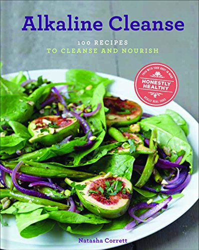 alkaline electric recipes from tys conscious kitchen the sebian way volume 2 56 alkaline electric recipes using sebian approved ingredients