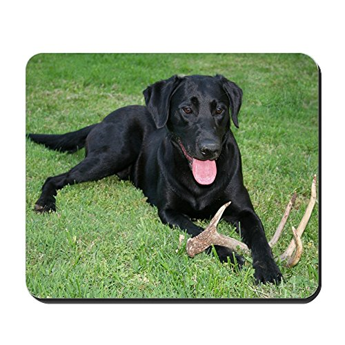 CafePress - Black Lab Storm Mousepad - Non-slip Rubber Mousepad, Gaming Mouse Pad