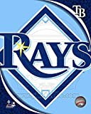 2011 Tampa Bay Rays Team Logo Photo 8 x 10in