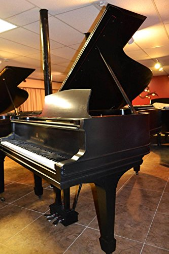 beautiful-steinway-b-grand-piano-rebuilt-with-all-steinway-parts