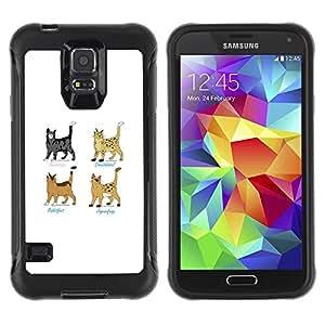 LASTONE PHONE CASE / Suave Silicona Caso Carcasa de Caucho Funda para Samsung Galaxy S5 SM-G900 / Warrior Cats Superhero Grey Brown