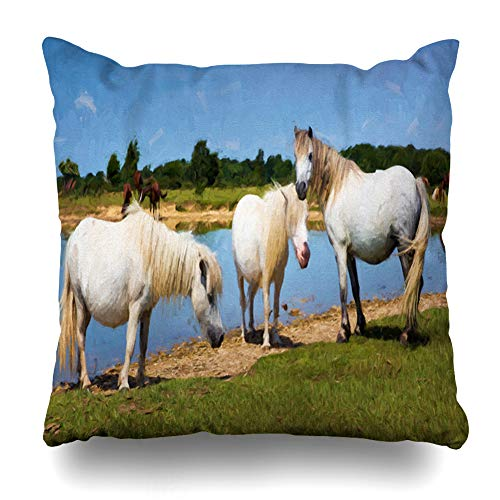 Ahawoso Throw Pillow Cover Blue Three White Ponies by Lake On Mammal Sunny Summer Day New Forest Hampshire Design Country Decorative Pillowcase Square Size 18