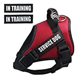 Dihapet Dog Harness, Service Dog Vest,Breathable Working Dog Harness for Easy Walking Training Hiking,Red/XS