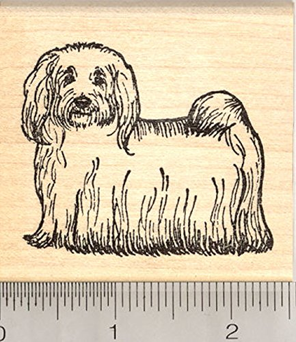 Havanese Rubber Stamp, National Dog of Cuba