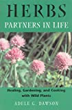 Herbs - Partners in Life, Adele G. Dawson, 0892819340