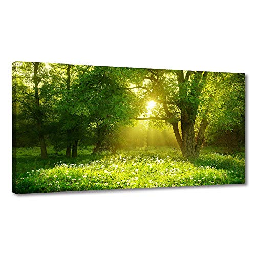 (BYXART Green Forest Landscape Canvas Prints Framed Posters Wall Decor Decals Art for Bedroom Living Room Bathroom Office Kitchen Home Decorations Ready to Hang (Green,)