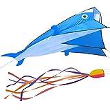 IMAGE 3D Kite Huge Frameless Soft Parafoil Giant Blue Dolphin Breeze Beach Kites