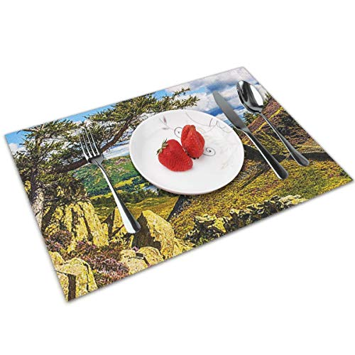 POQQ Placemats for Dining Table Ullswater Lake District 5, Washable Easy to Clean PVC Placemat, Heat Resistand Kitchen Dinner Table Mats 12x18 Inches Set of 4
