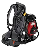 Wyco W402-535 Gas Backpack Concrete Vibrator, Honda GXH50 4 Cycle Engine, 2.1 hp, 7000 RPM