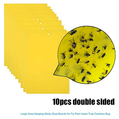 Goodlock 10Pcs Strong Flies Traps Bugs Sticky Board Catching Aphid Insects Pest Killer -