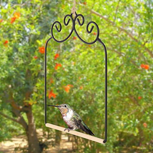 Blossom Hanging Feeder Hummingbird (Home-X Hummingbird Swing. Metal Frame Hummingbird Swing with Wooden Dowel)