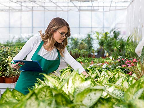 - Plant Selection: Finding Quality Specimens