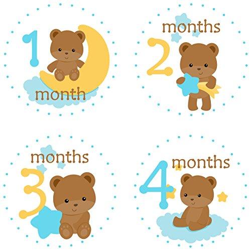 Little LillyBug Designs - Monthly Baby Stickers - Boy - Teddy Bear