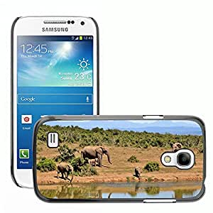 Super Stellar Slim PC Hard Case Cover Skin Armor Shell Protection // M00127101 Elephant Herd Of Elephants Animals // Samsung Galaxy S4 Mini i9190