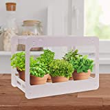Extra Wide LED Indoor Herb Garden - at Home