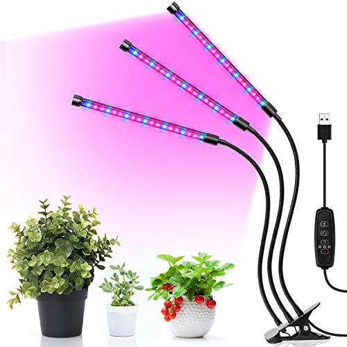 Led Lights For African Violets