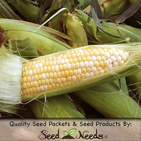 160 Seeds, Sweet Corn