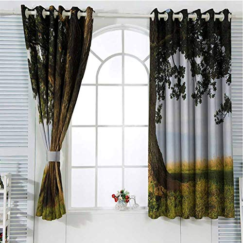 Nature Patio Door Curtains for Bedroom Majestic Oak Tree on Grass Estonia Northern Europe Rural in Summer Landscape Thermal Insulated Noise Reducing W96 x L84 Inch Cocoa Fern Green (Doors Patio External Oak)