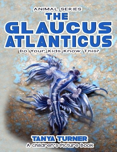 The Glaucus Atlanticus Do Your Kids Know This   A Childrens Picture Book  Amazing Creature Series   Volume 52