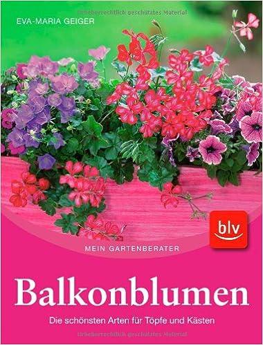 Balkonblumen Die Schonsten Arten Fur Topfe Und Kasten Amazon De