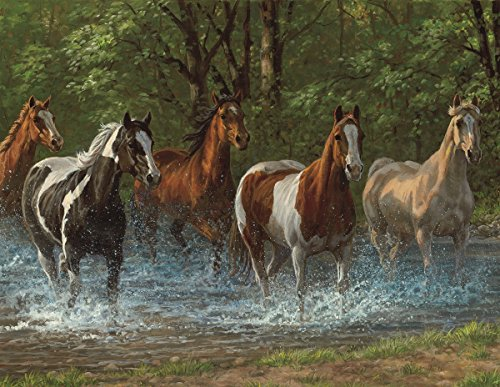 Springbok Puzzles - Summer Creek - 500 Piece Jigsaw Puzzle - Large 18 Inches by 23.5 Inches Puzzle - Made in USA - Unique Cut Interlocking Pieces