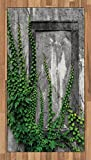 Lunarable Mystic Area Rug, Ivy Plant on Wall Aged Antique Looking Picture Frame as a Window Creative Art, Flat Woven Accent Rug for Living Room Bedroom Dining Room, 2.6 x 5 FT, Green and Grey