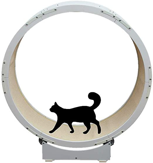 Neko-Cat tree Marco De Escalada para Gatos Grandes 1.2 M De Diámetro Cinta De Correr De Metal Gato Juguete Redondo Rueda Grande Mascota Corriendo Árbol De Gato Blanco: Amazon.es: Productos para mascotas