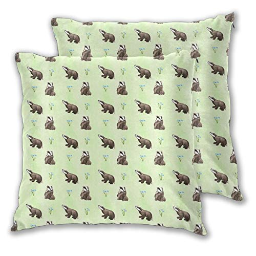 Kui Ju Pack of 2 Throw Pillow Covers