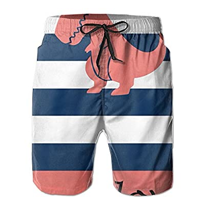 Hot OPDDBB Fashion Dinosaurs Board Shorts Swim Shorts With Pockets For Men for sale