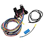 BETTERCLOUD 12 Standard Circuit Wiring Harness Muscle Car Hot Rod Street Rod XL Wires Universal Fitment (12 Circuit)