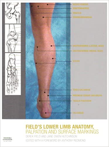 Lower Limb Anatomy, Palpation & Surface Markings, 1e