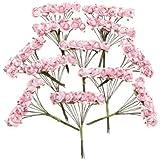 SODIAL (R) 144 pz Mini fiori carta rosa di nozze per bomboniera artigianale (rosa)