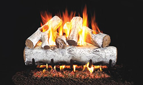 Real Fyre 24-inch White Birch Vented Gas Logs Bundled with G45 Burner Kit (Natural Gas) by Real Fyre