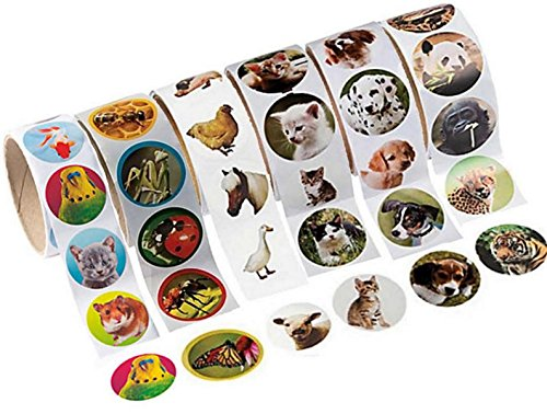 Animal Stickers, 600 Photo Stickers of Pets, Farm Animals, Zoo Animals, Insects Cats and Dogs -