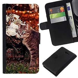 KLONGSHOP // Tirón de la caja Cartera de cuero con ranuras para tarjetas - Curl Americano Shorthair gato Manx - Sony Xperia M2 //