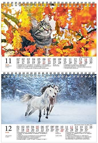 Tierzauber Bauernhof DIN A5 Tischkalender für 2021 verschiedene Tiere auf dem Bauernhof- Geschenkset Inhalt: 1x Kalender, 1x Weihnachts- und 1x Grußkarte (insgesamt 3 Teile)