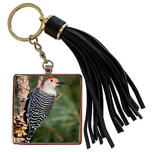 3dRose Danita Delimont - Birds - Red-bellied Woodpecker on pine tree, Marion, Illinois, USA. - Tassel Key Chain (tkc_205998_1)